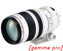 Canon 100-400mm f/4.5-5.6 L IS